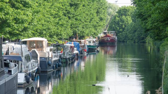 Vlaamse Waterweg dient nieuwe aanvraag in om bomen in jachthaven in Oudenaarde toch te kappen