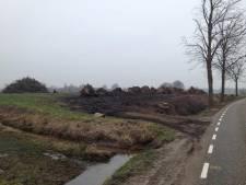 Beltrumse broers Te Bogt moeten na drie jaar alsnog gekapte bomen terugzetten