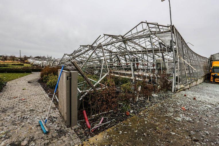 De valwinden vernielden in januari de planten- en bloemenkwekerij van Wim Maes.