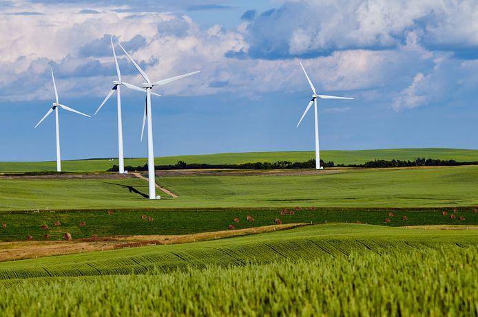 Energieleveranciers zetten steeds vaker hun groene stroom in de kijker.