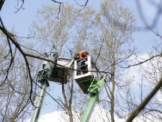 Twee arbeiders geëvacueerd uit defecte hoogwerker op 20 meter hoogte