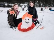 Wie wint de Terborgse Sneeuwpopwedstrijd?