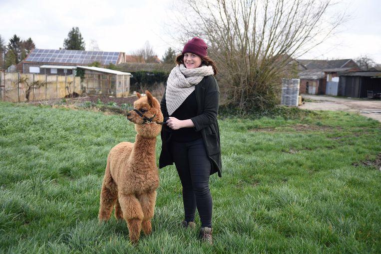 Sieglinde Steylmans met nieuwe aanwinst: alpaca Jean-Jaques (Jean voor de vrienden)