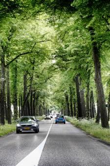Ruim baan voor wandelaars en fietsers op statige Utrechtse Maliebaan kost een miljoen euro extra