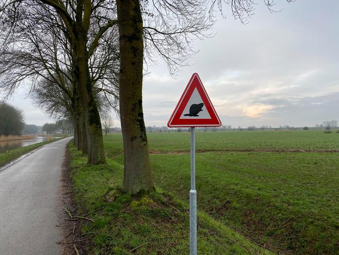 Verkeersbord bever Meertje Nijmegen Persingen