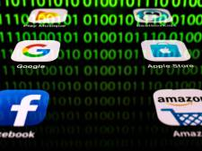Techbedrijven VS sluiten zich aan bij rechtszaak tegen visumstop Trump