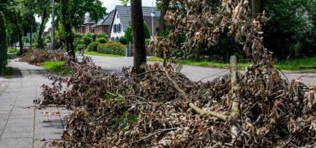 Stormschade in Eck en Wiel is nu eindelijk opgeruimd