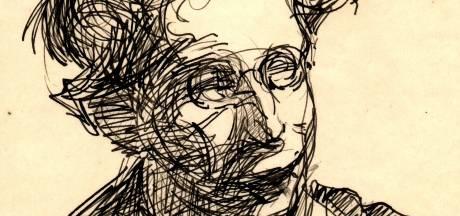 Unieke vondst: zeldzame portretten ontdekt van schrijver Herman de Man