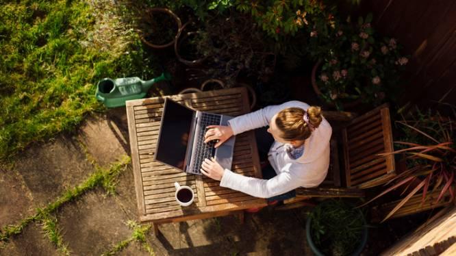 Thuiswerken op je terras of in je tuin: hoe zorg je voor wifi tot buiten?