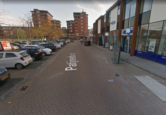 Patijnenburg in Naaldwijk.