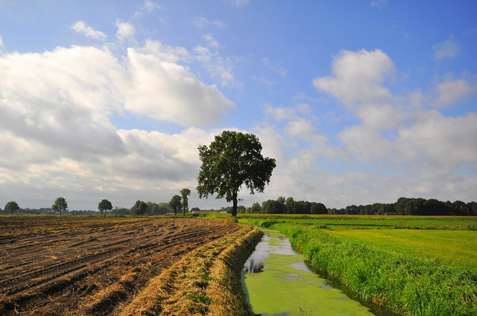 veel bewolking op zondag boven zuidoost Brabant, maar tijdens de vroege middaguren verschenen er tijdelijk ook enkele mooie opklaringen boven onze regio