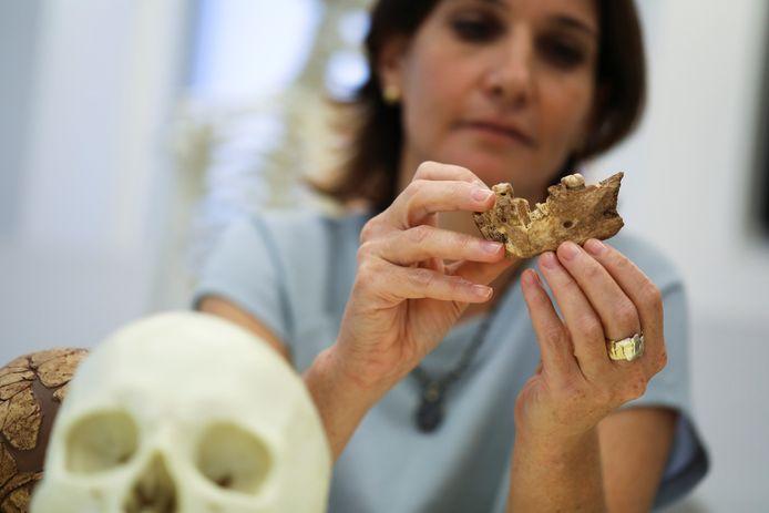 Homo Nesher Ramlet tinggal di daerah itu 400.000 tahun yang lalu.