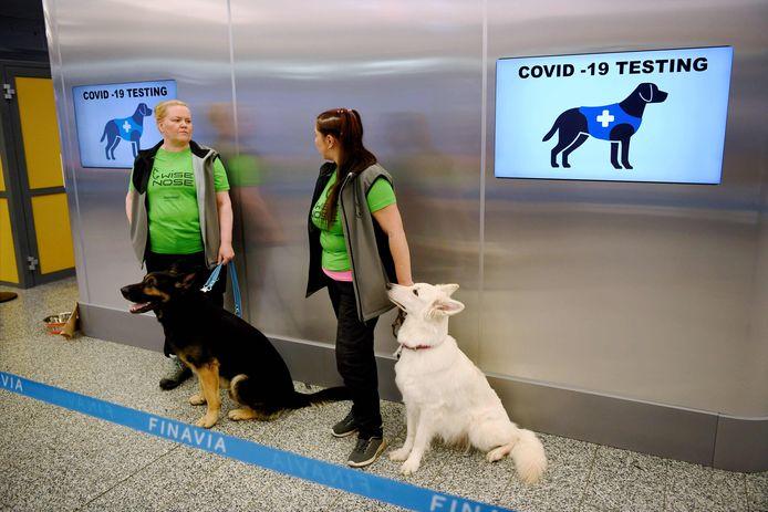 Coronaspeurhonden op de Helsinki Airport in Finland.