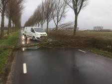 Omgevallen boom blokkeert weg in Herkingen