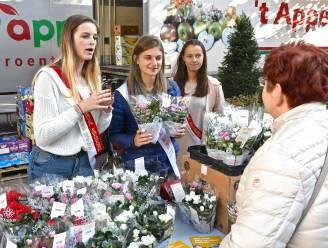 Team Eeklo gaat komende dagen 1.000 azalea's verkopen voor Kom op tegen Kanker