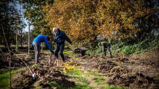 Meer dan 500 boompjes in de grond voor nieuw Keerpuntbos, publieksevent volgt later