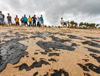 """WWF: """"Olievlek voor Brazilië is tragedie voor mariene ecosysteem"""""""