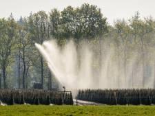 Boeren op de Utrechtse Heuvelrug mogen vanaf maandag niet meer sproeien