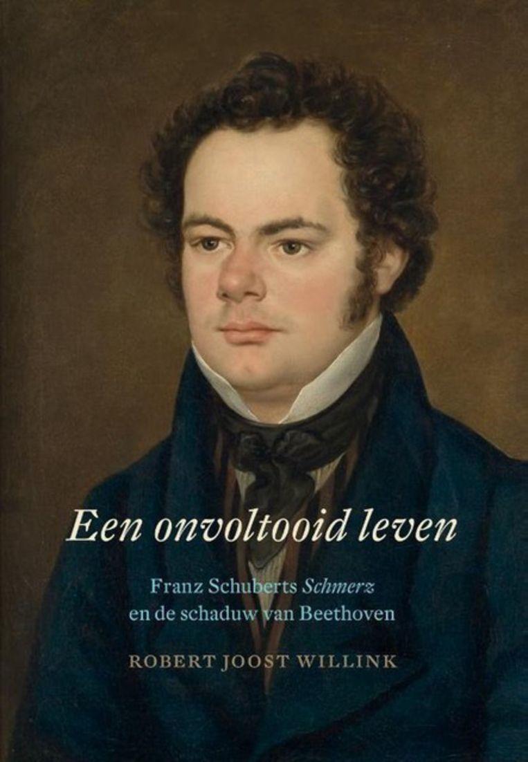 Een onvoltooid leven, Robert Joost Willink Beeld
