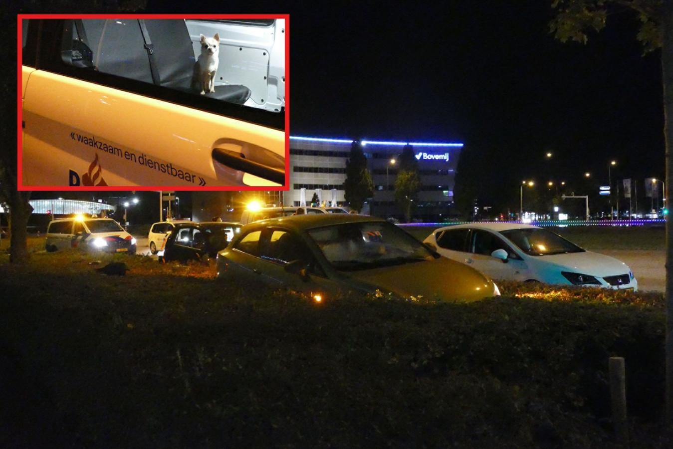 De politie heeft zich over een hondje ontfermd omdat hetbaasje bij een auto-ongeluk op het Takenhofplein in Nijmegen gewond raakte.