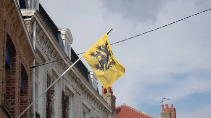 N-VA vangt bot: partij mag geen leeuwenvlaggen uitdelen op 11 juli
