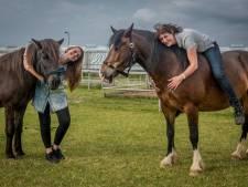 Paarden geven kinderen steuntje in de rug