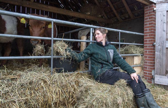 Sanne Beld gaat elke ochtend naar Buurse om haar Lakenvelders te voeren en het stro te verversen. Dat levert strorijke stalmest op die later het land op gaat om de grond te bemesten.