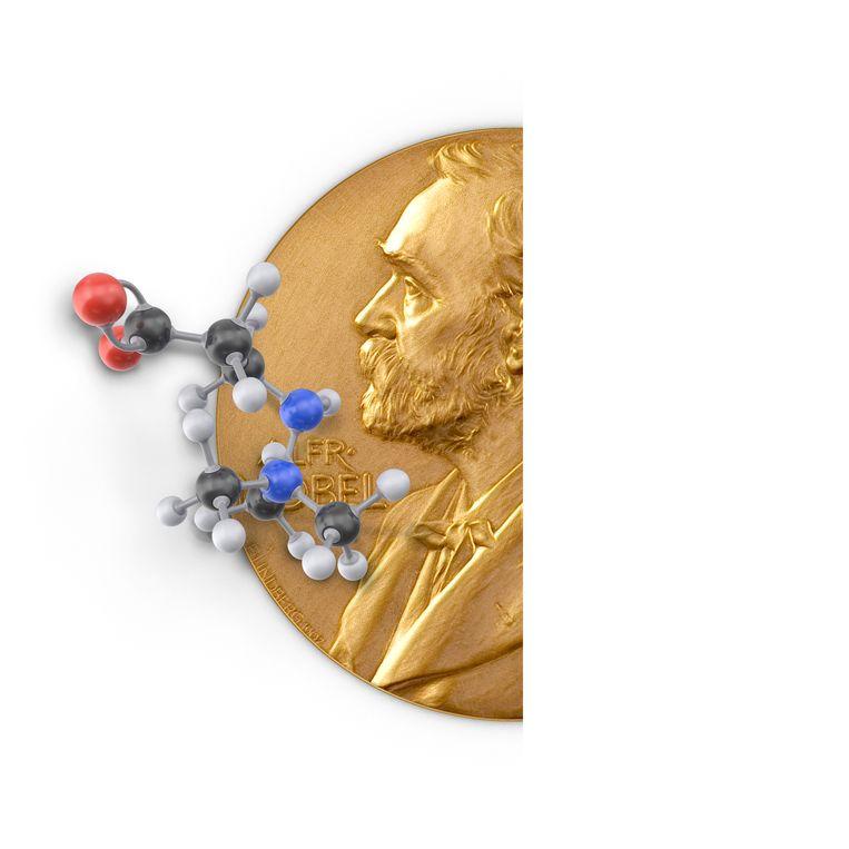 Nobelprijs Scheikunde.  Beeld JeRoen Murré