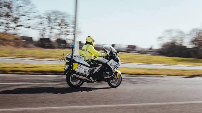 Sluikstorters en loslopende honden: politieacties in Deurne en Merksem