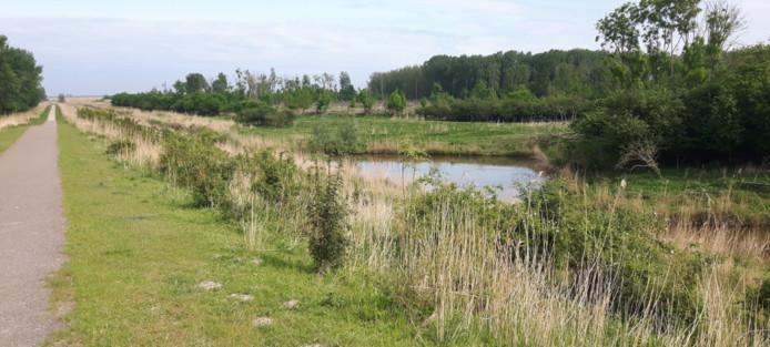 Het Oostrandpark in Almere.