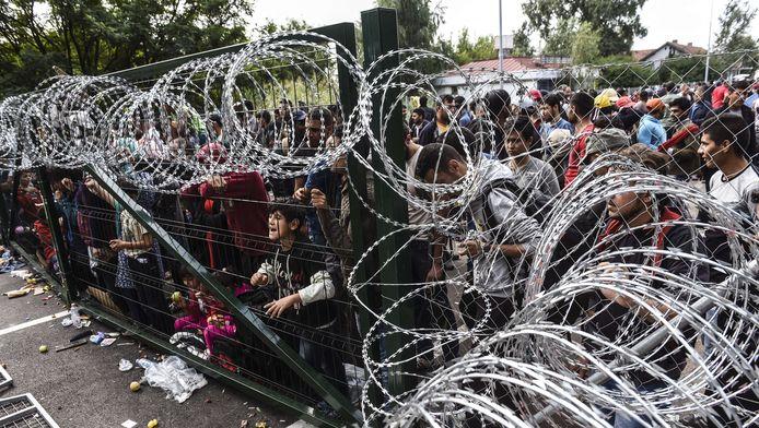 Vluchtelingen bij het hek dat Hongarije bij de grens met Servië heeft geplaatst