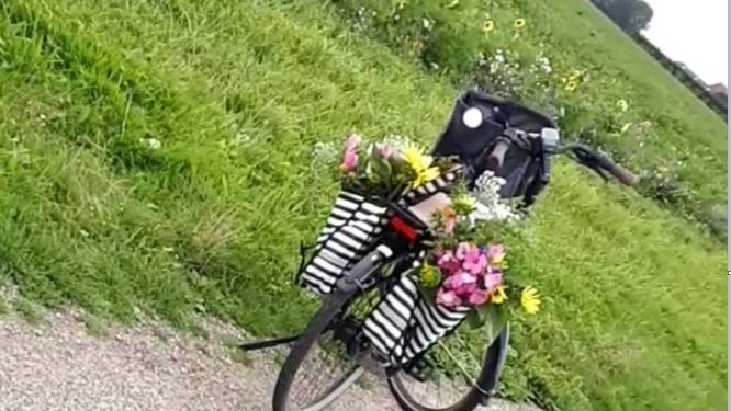 Boeren balen: fietsers stelen steeds vaker bloemen van akkerranden