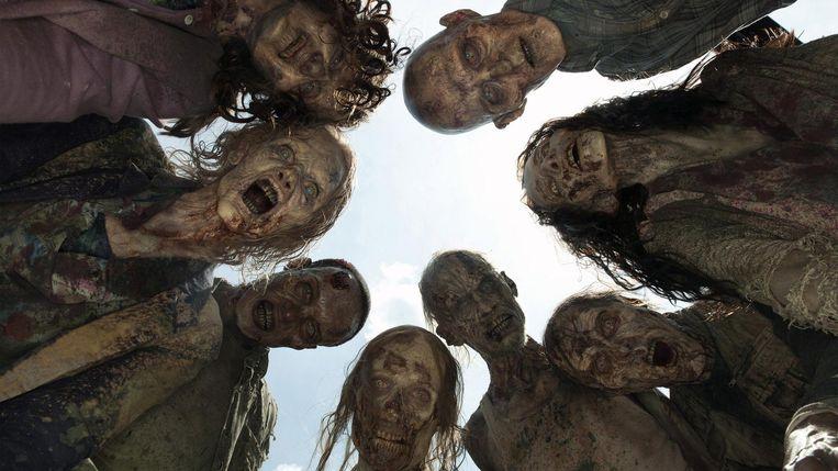 The Walking Dead Beeld 2010