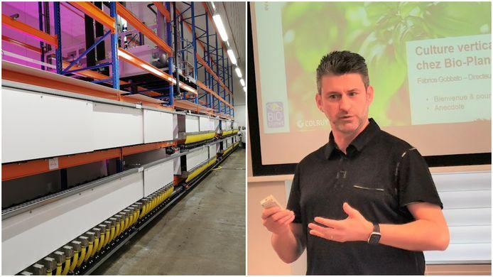 Fabrice Gobbato, algemeen directeur van Bio-Planet, geeft uitleg over de 'vertical farm' van Colruyt Group (links).