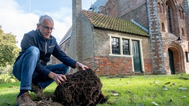 Mysterieuze schatgravers vernielen de kerktuin in Ritthem