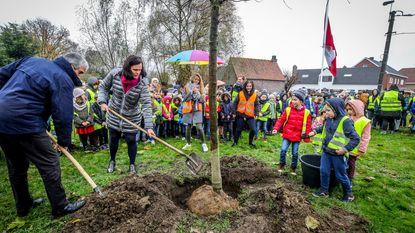 Leerlingen VBS De Vaart planten vredesboom