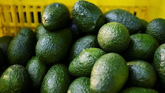 Amsterdams avocadorestaurant opent avocadowinkel