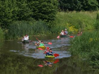 Sport Neteland organiseert kajak- of kanotocht voor 55-plussers op Kleine Nete