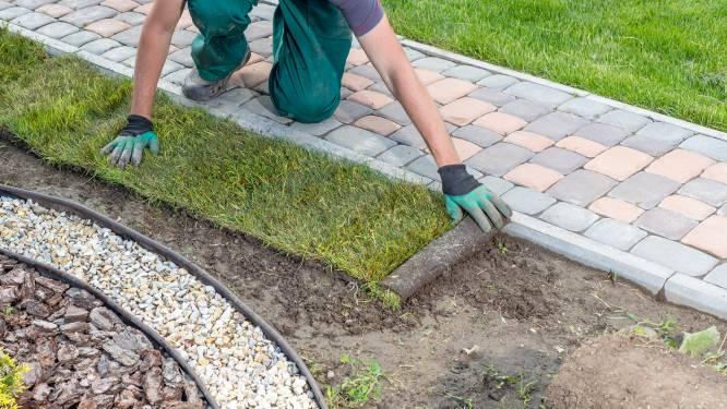 Herfst hét moment om de tuin onder handen te nemen: goedkoper én beter voor planten