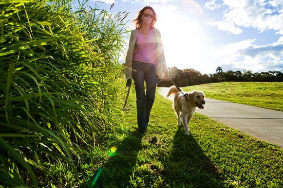 Zondag kunnen wandelaars hun hart ophalen in Zandhoven.