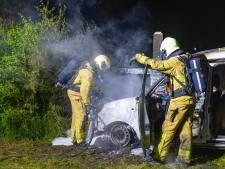 Heeft de steenmarter het gedaan? Gerrit Dijkslag uit Wapenveld ziet zijn auto in vlammen opgaan