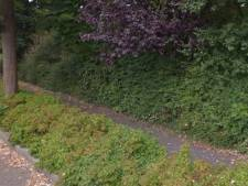 Utrechtse Heuvelrug laat niet verkocht snippergroen verwilderen: 'Een aanmoediging om te kopen'