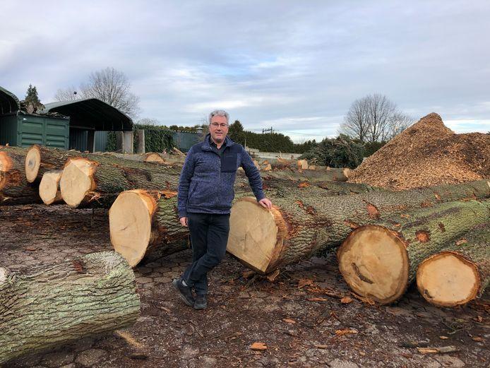 Boomrooier Kees Weijtmans bij de eikenstammen die zijn jubilerende bedrijf enkele weken geleden kapte op de Udenhoutse Schoorstraat