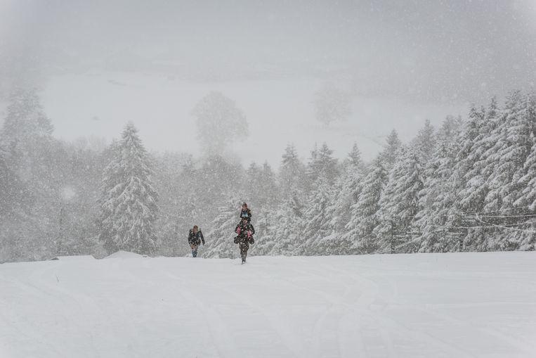 In de Ardennen kan er tot 40 cm sneeuw vallen volgende week.