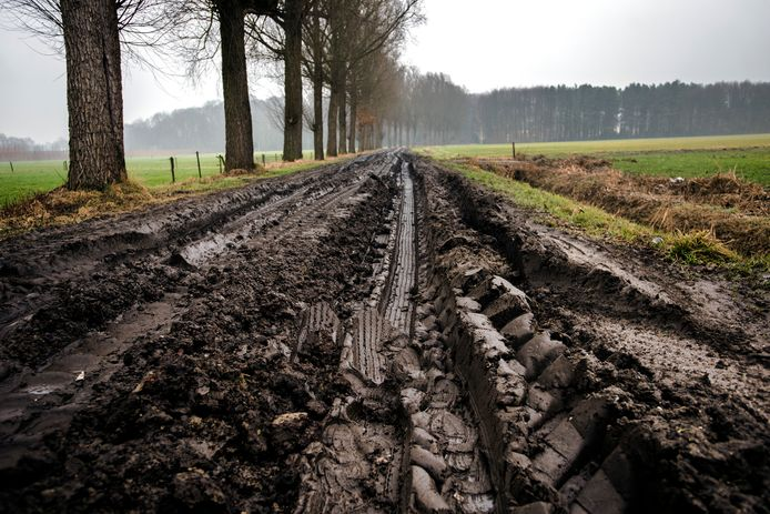 Verschillende zandpaden worden al wel gebruikt in Hilvarenbeek, maar ze zijn daar niet geschikt voor.