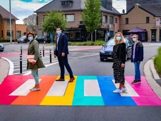 Noord-Limburg kleurt paars en toont regenboog op IDAHOT