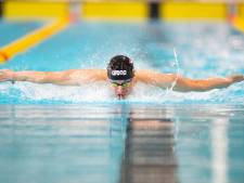 Gezinsman Arjan Knipping: 'Zwemmen is mijn werk, maar ik wil ook papa zijn'