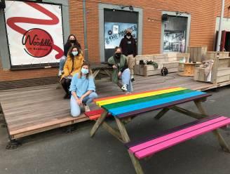 """Picknickbanken aan jeugdhuis The Nooddle krijgen regenboogkleur: """"Het thema leeft bij onze jongeren"""""""