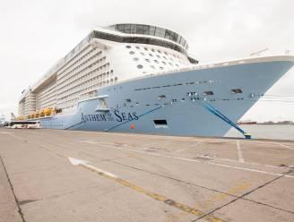 """Haven van Zeebrugge noteert - ondanks brexit - wéér positieve cijfers: """"En dit najaar staan er nog 30 cruises op de planning"""""""