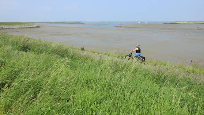 Advocaat omwonenden Perkpolder fileert scenario's om zeedijk aan te pakken: 'Dijk zal wel degelijk moeten worden verwijderd'